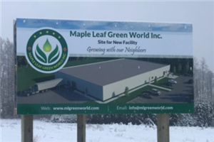 New Listing Alert Maple Leaf Green World N Mgw Graduates To Neo N